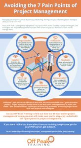 7-pain-points-of-project-management-infographic-v.2